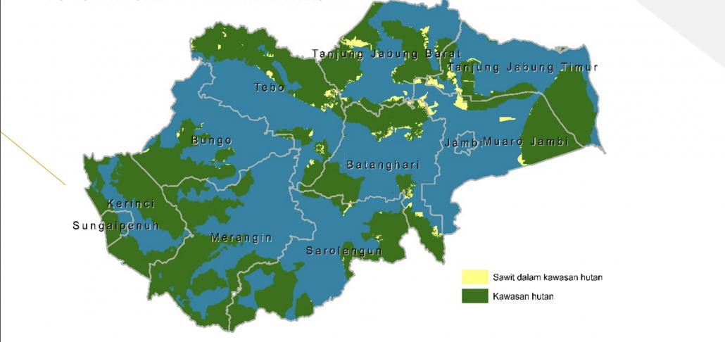 Read more about the article Kontribusi Sawit untuk Penerimaan Negara dan Pendapatan Daerah di Provinsi Jambi Belum Optimal